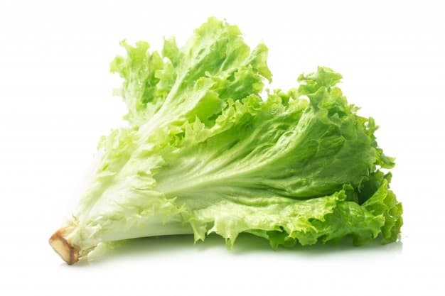 a picture of lettuce