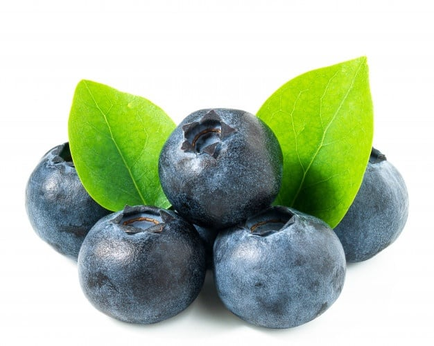 a picture of blueberries - can rats eat them?