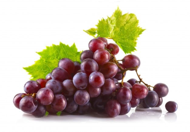 a picture of grapes - can rats have this delicious fruit?