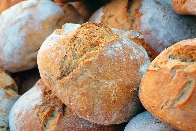 a picture of bread - can rats safely eat this?