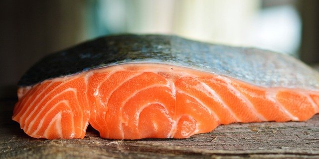 a picture of salmon - can rats eat it?