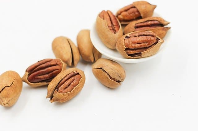 picture of pecans - can hamsters eat this nut safely?