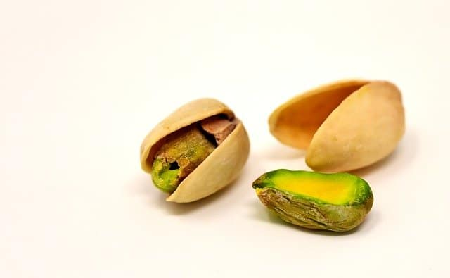 picture of a pistachio nut - can hamsters eat it?